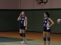 2 Divisione Volley 11