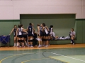 2 Divisione Volley 15