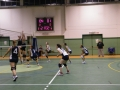 2 Divisione Volley 24