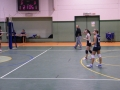2 Divisione Volley 31